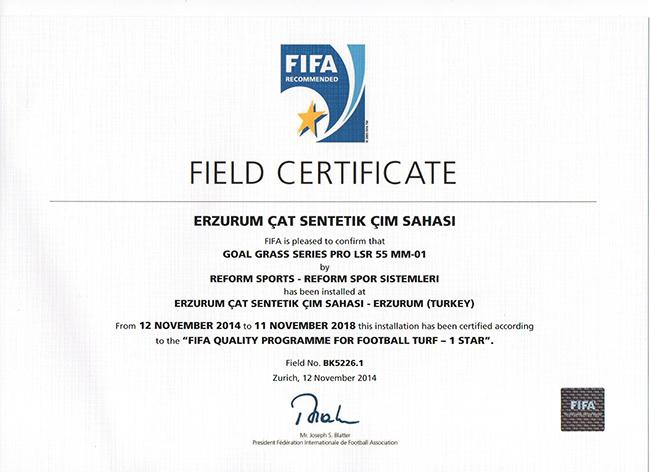 24 fifa1 erzurum sentetik cim sahasi 2014