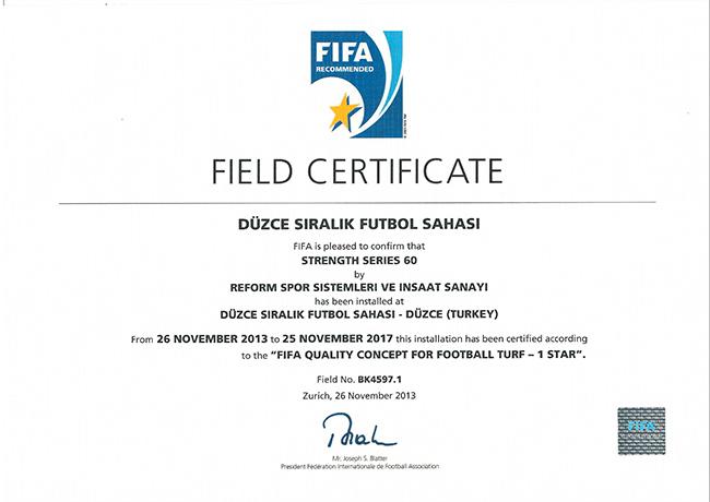 6 fifa1 duzce siralik futbol sahasi 2013