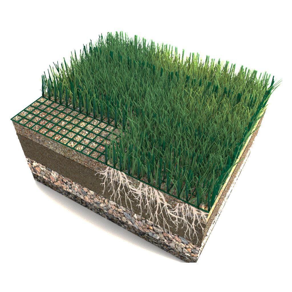 hybrid grass nw